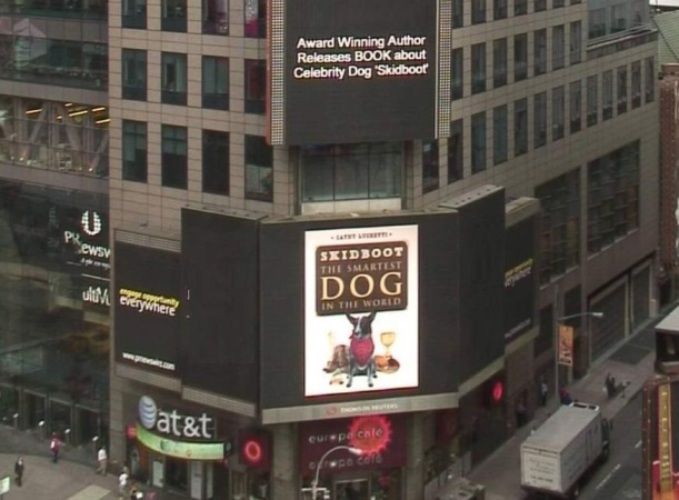 Skidboot Goes to Times Square